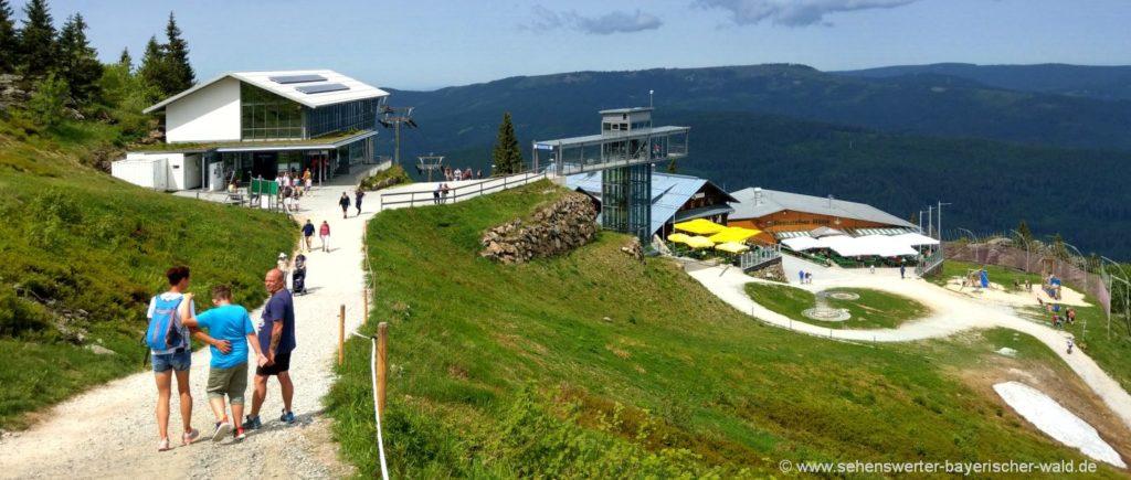Wandern am Arber Bayerischer Wald Wanderwege zum Gipfel