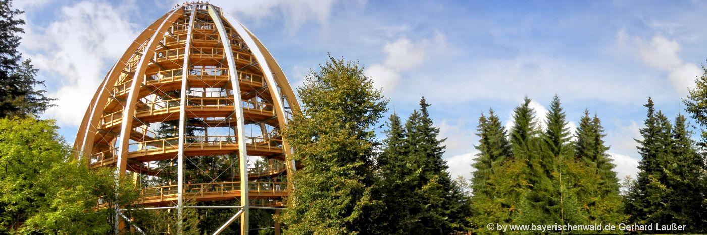 Freizeitangebote und Freizeitaktivitäten Bayerischer Wald