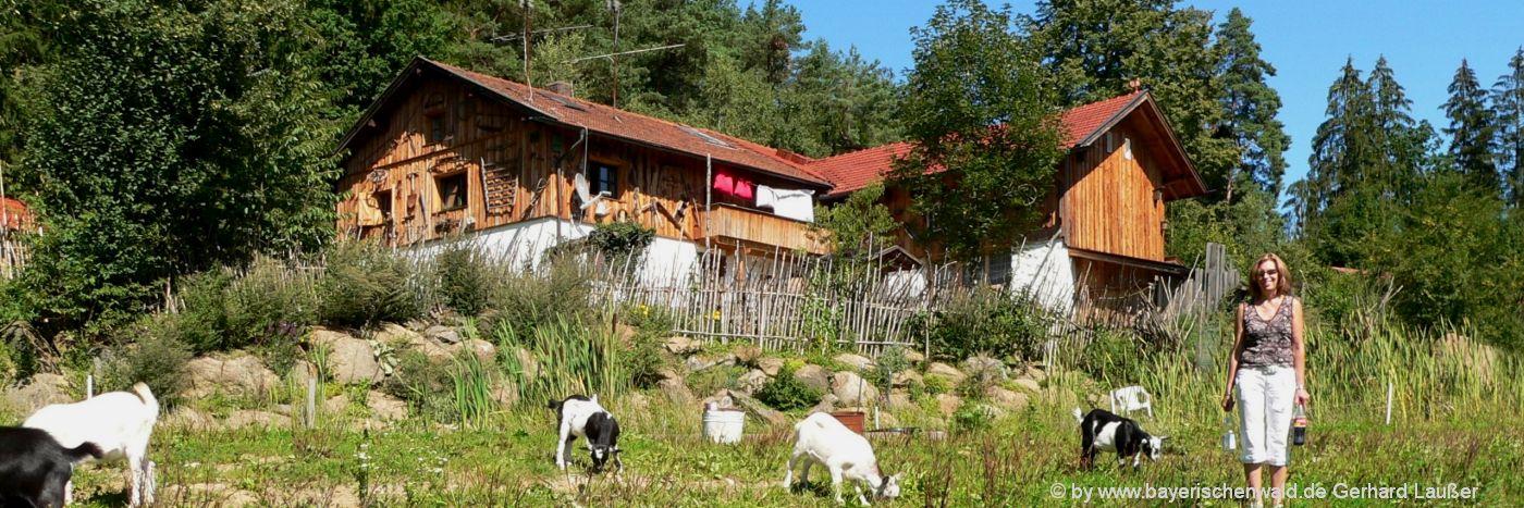 Gruppenunterkunft in Bayern Ferienhütten im Bayerischen Wald