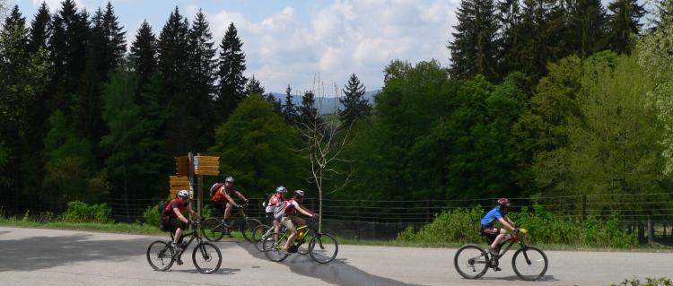 E-Bikes und Elektrofahrräder kaufen Pedelec Fahrradtouren Bayern