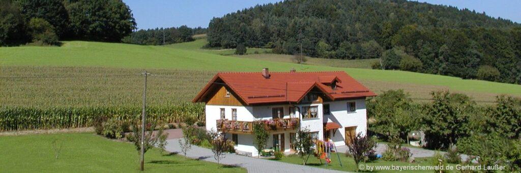 Bayerischer Wald Ferienhaus mieten in Bayern