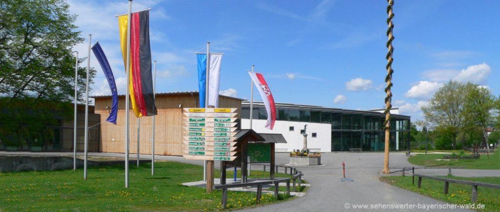 Glasmuseum in Frauenau Bayerischer Wald Freizeitangebote & Ausflugsziele