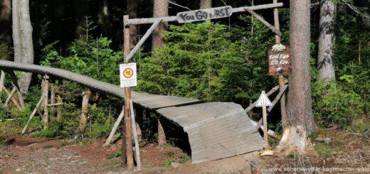 geisskopf-bikepark-mtb-downhill-strecken-mountainbike-touren