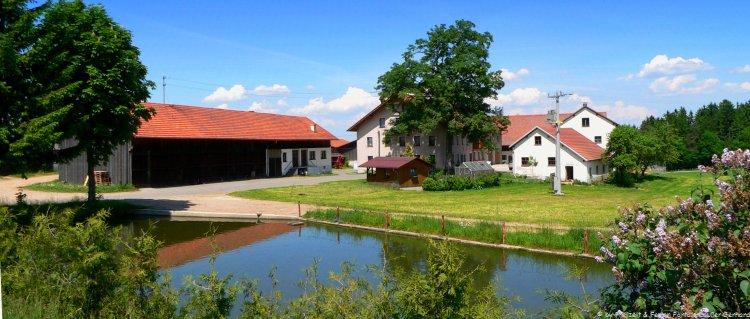 FErienwohnung am Bauernhof Piendl Hofansicht mit Teich