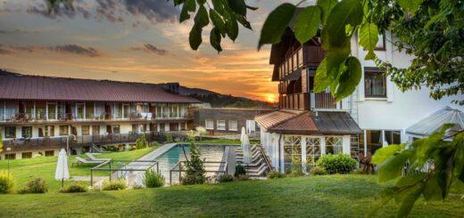 lindenwirt-bayerischer-wald-wellnesshotel-infinity-swimming-pool