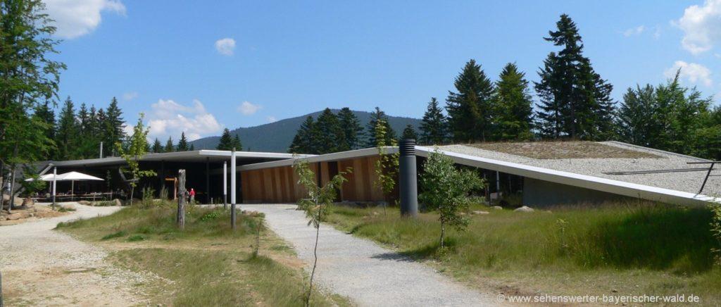 Bayerischer wald Nationalpark Besucherzentrum mit Tierfreigelände