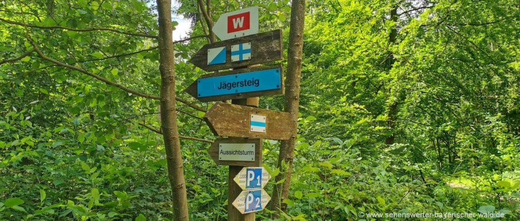 neustadt-rauher-kulm-wanderwege-basaltkegel-ausflugsziele