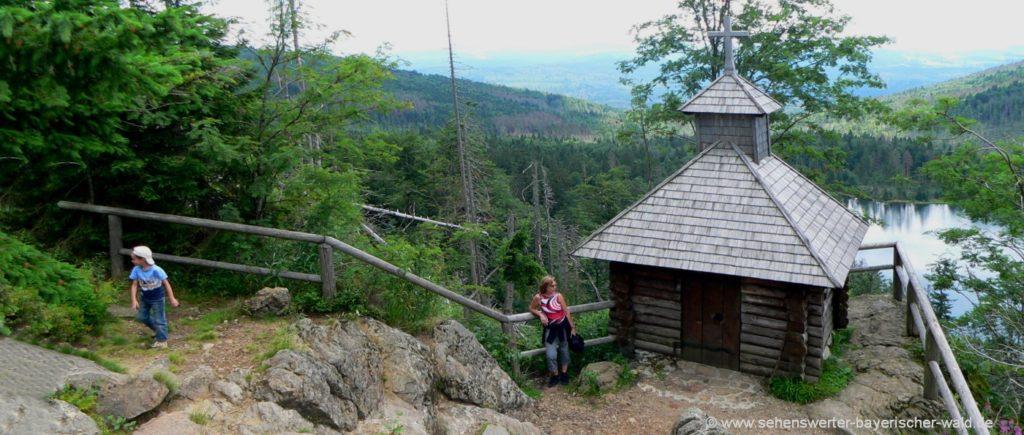 Wanderung im Nationalpark Bayerischer Wald Rachel Berg