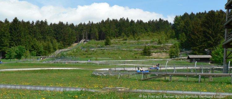 Sommerrodelbahn in Bayern Bobbahn in Sankt Englmar