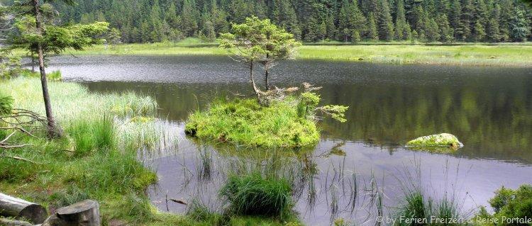 Ausflugsziele Lohberg im Bayerischen Wald kleiner Arbersee