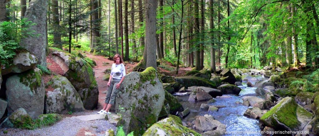 Saußbachklamm Wanderkarte Bayerischer Wald Ausflug