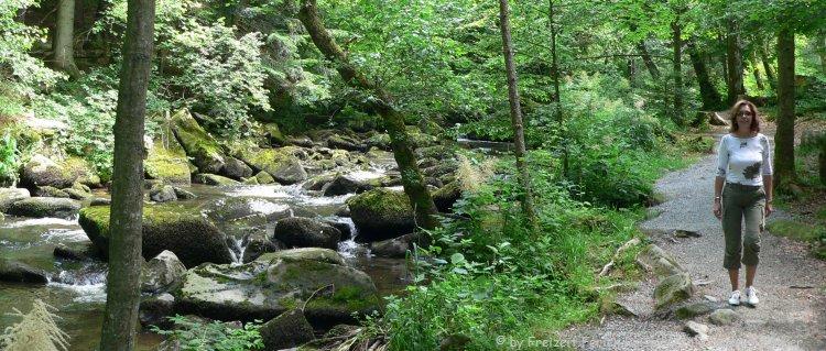 Naturschutzgebiet Saussbachklamm Waldkirchen