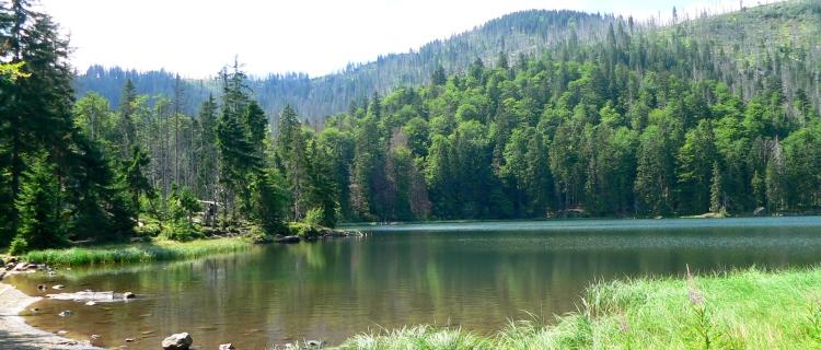 Wanderung Nationalpark Bayerischer Wald Rachelsee