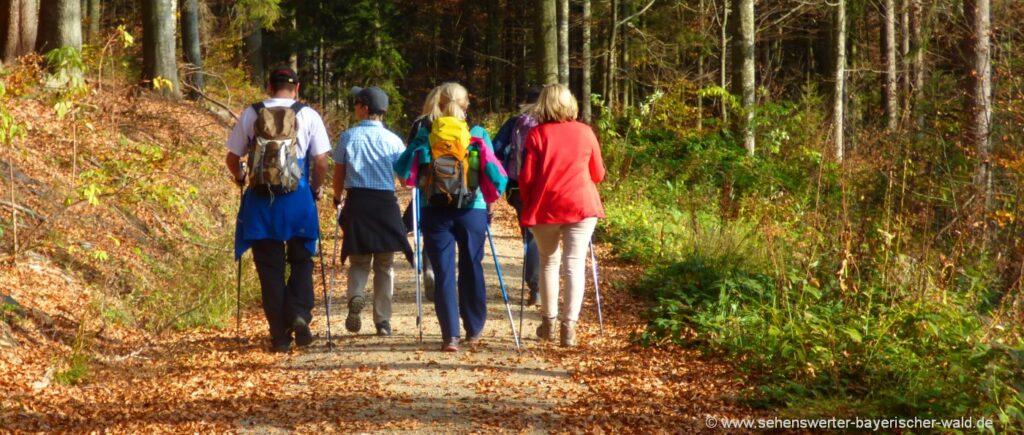 Angebote Wanderurlaub Bayerischer Wald & Oberpfalz - Wanderwege & Wandertouren