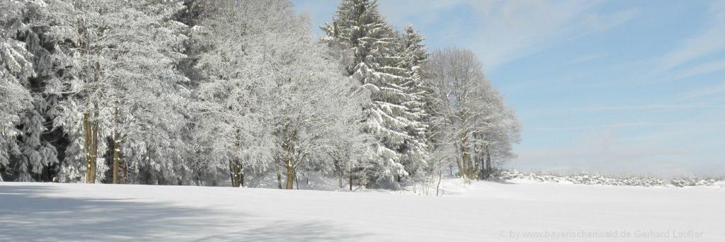 Skigebiete Bayerischer Wald Skifahren im Winter und Schnee